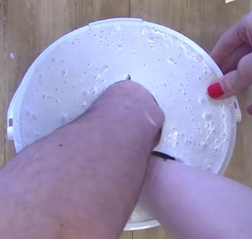 Création du Moule à l'alginate